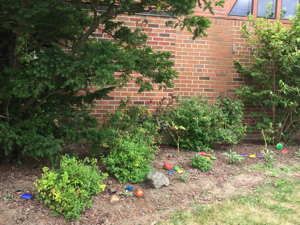 View of a stretch of garden with schrubs, bushes and painted stones