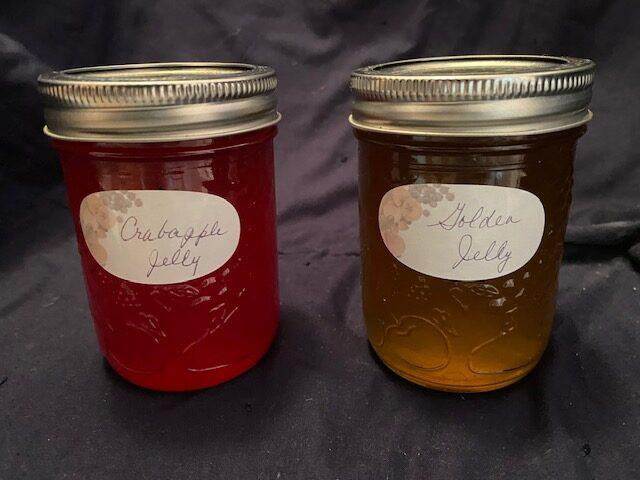 Two mason jars of fruit jelly