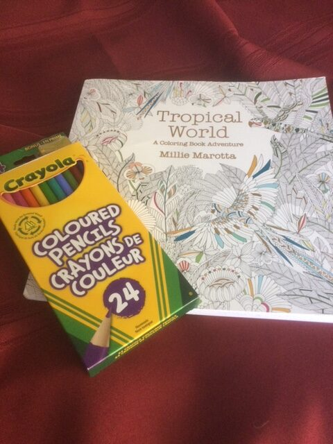 Colouring book and set of pencil crayons